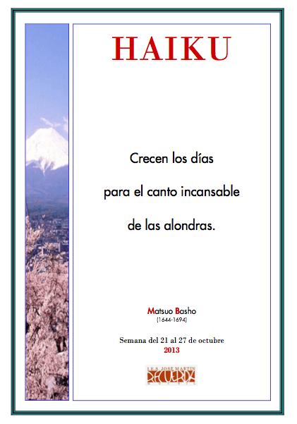 haiku 4